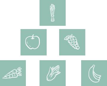 iconos frutas Servicios